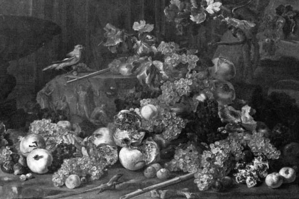 La natura morta romana nelle foto di Federico Zeri