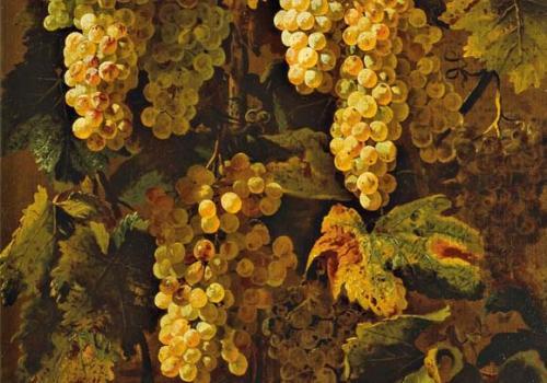 Dal Maestro della natura morta Acquavella a Michelangelo Cerquozzi. Un'ipotesi di lavoro